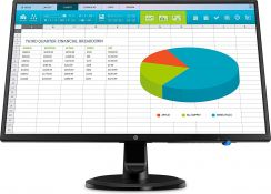 HP N246v 23.8 Inch Monitor